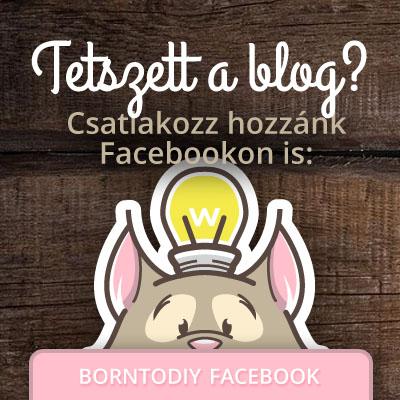 BornToDIY a Facebookon!